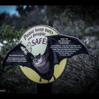 Bat Cave at Kickapoo State park